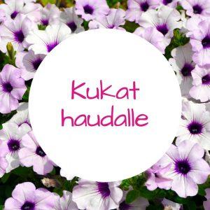 Jennin Kukkapuoti - iloisen palvelun kukkakauppa Tampereella - hautakukat ja kynttilät