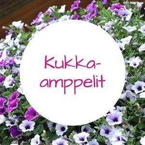 Jennin Kukkapuoti - iloisen palvelun kukkakauppa Tampereella - kukka-amppelit